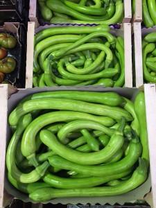 Zucchine-Trombetta